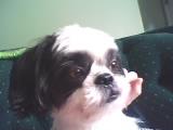 My Rocky