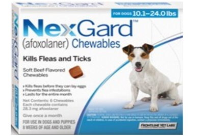 NexGuard chewables flea and tick